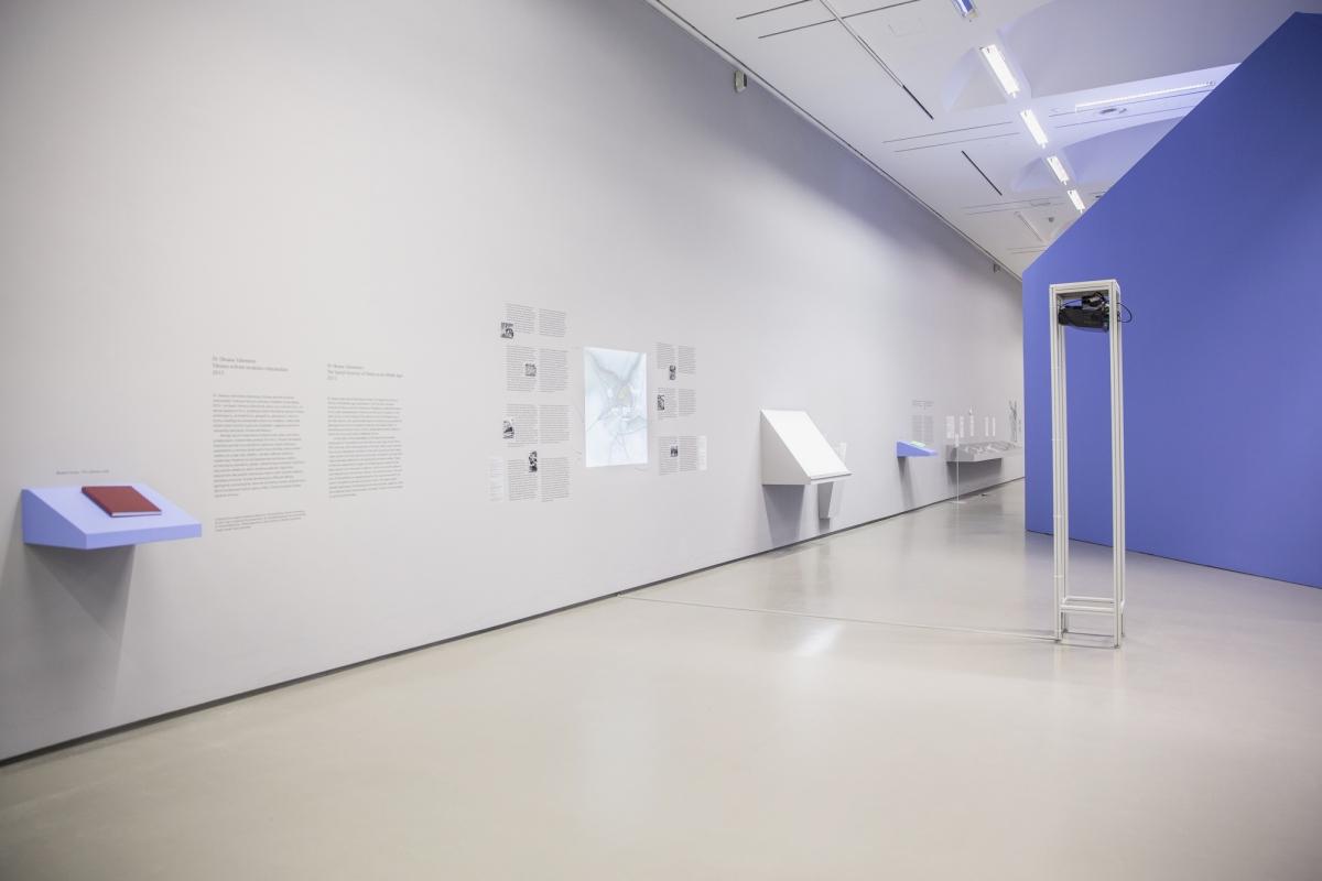 32-NDG-Miesto-gamta-Nacionaline-dailes galerija-2017