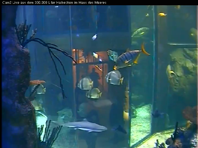 VIENNA PUBLIC AQUARIUM WEBCAM 1