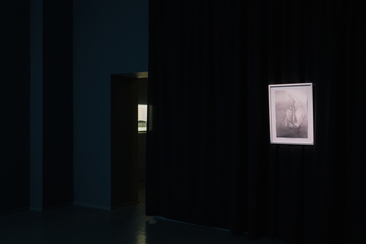 Kūnas ir tamsa_10_Galerija Vartai_ekspozicijos vaizdas