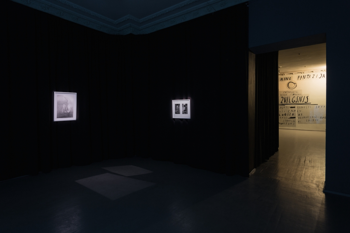 Kūnas ir tamsa_14_Galerija Vartai_ekspozicijos vaizdas