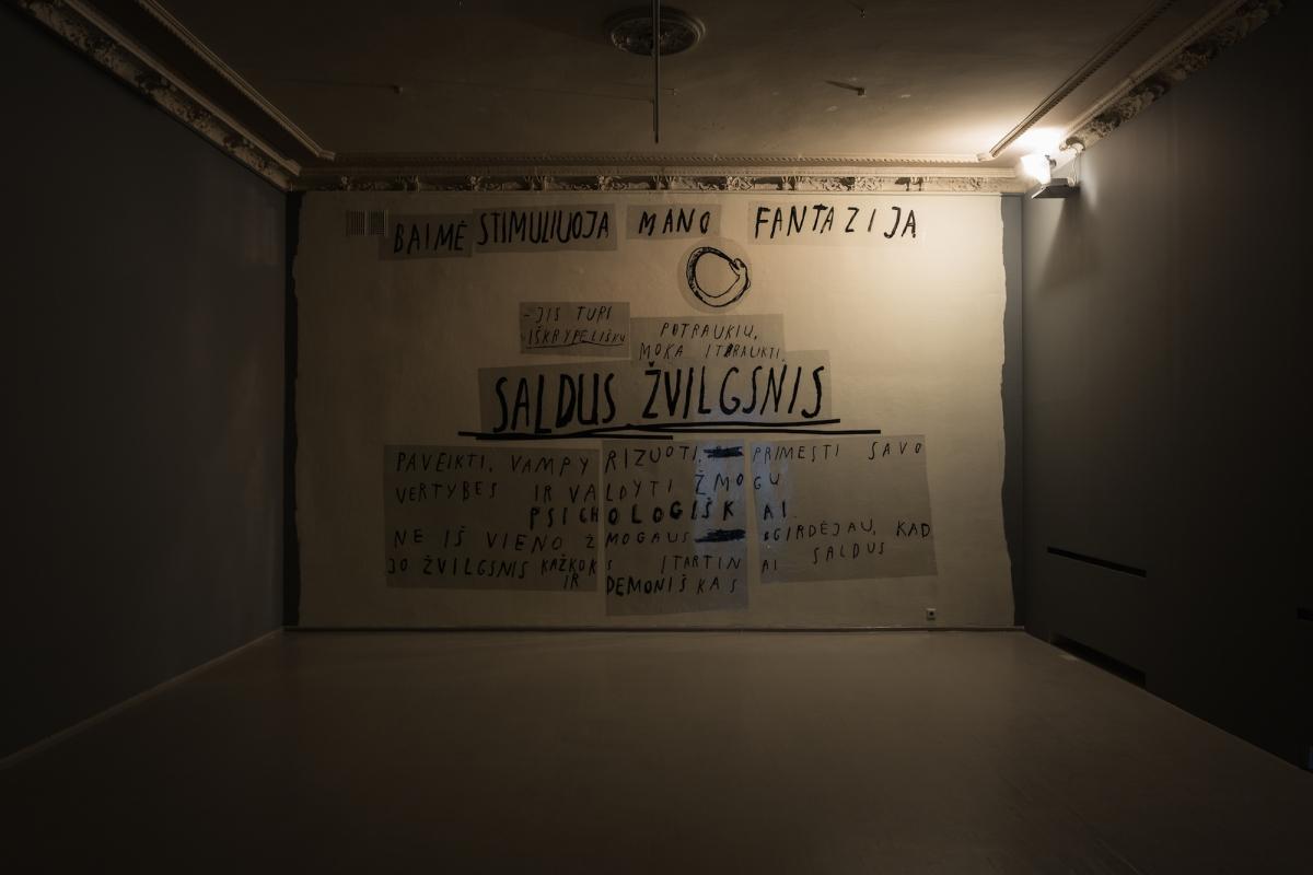 Kūnas ir tamsa_16_Galerija Vartai_I. Rojūtė, Saldus Žvilgsnis, 2017.