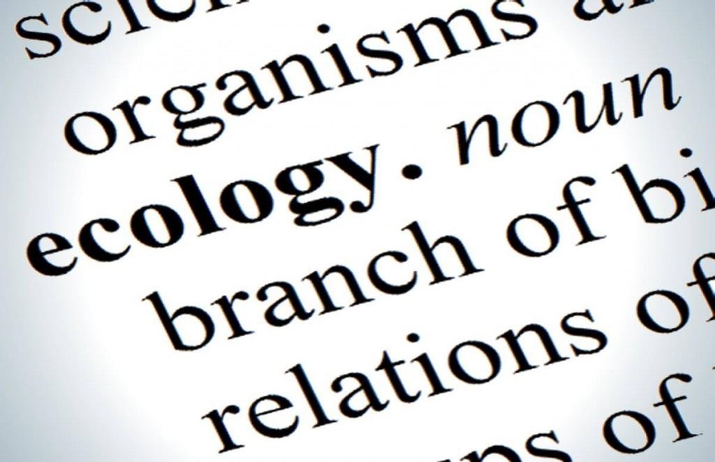 kulturos ekologija