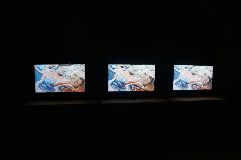 Viktorijos Damerell video ir audio instaliacija pulsas