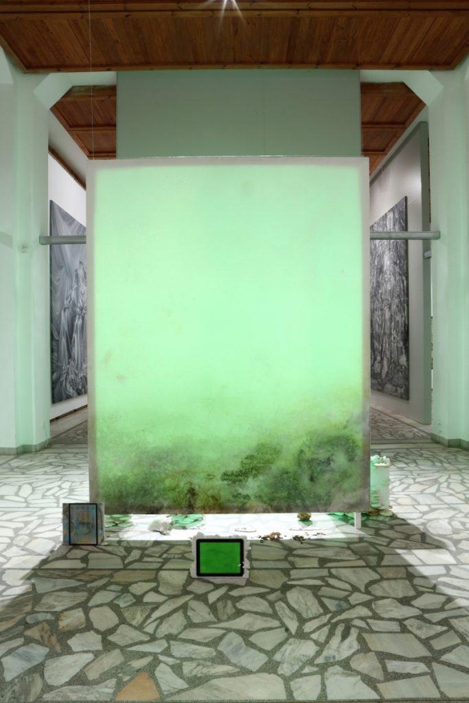 alma-heikilla-mikroflora-2016-instaliacijos-fragmentas