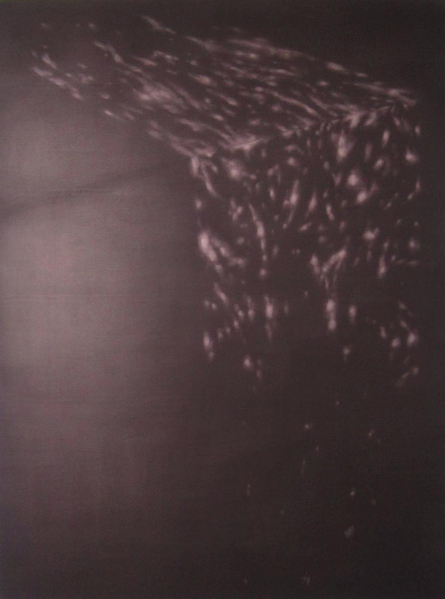 rosanda-sorakaite