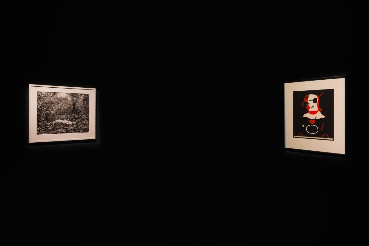 Kūnas ir tamsa_6_Galerija Vartai_ekspozicijos vaizdas
