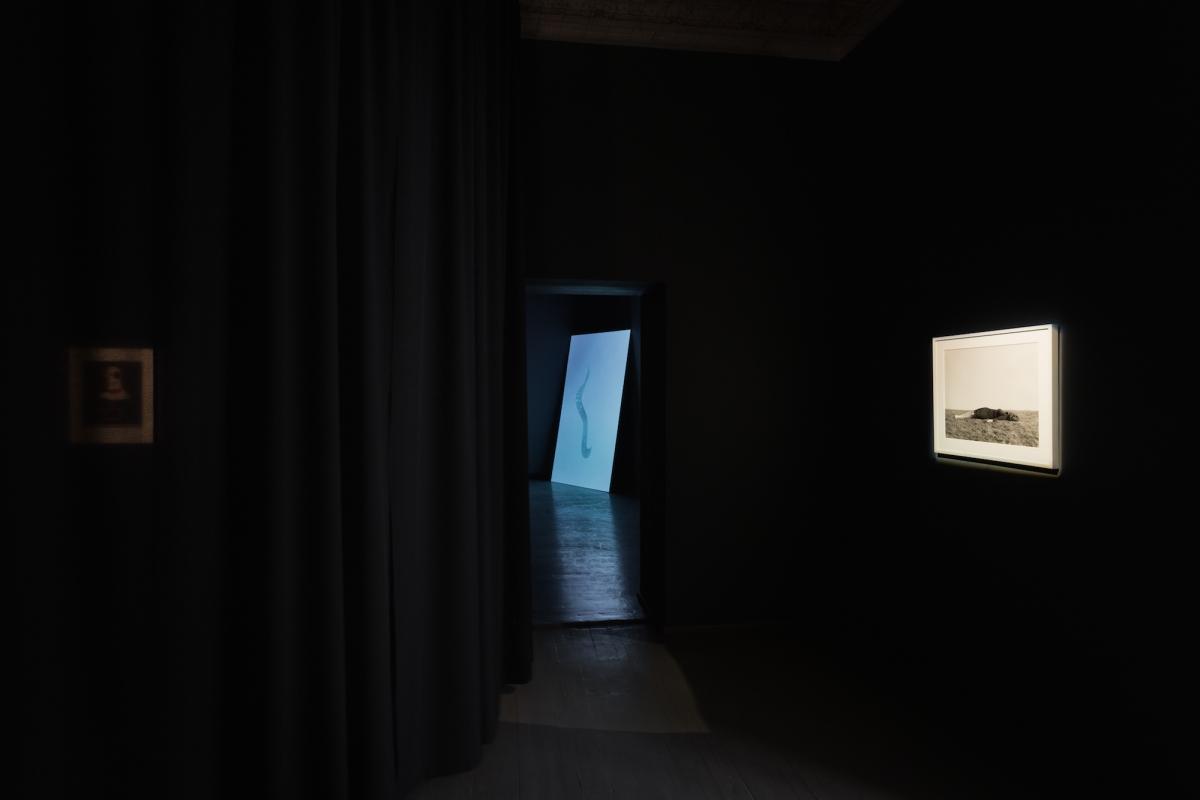 Kūnas ir tamsa_7_Galerija Vartai_ekspozicijos vaizdas